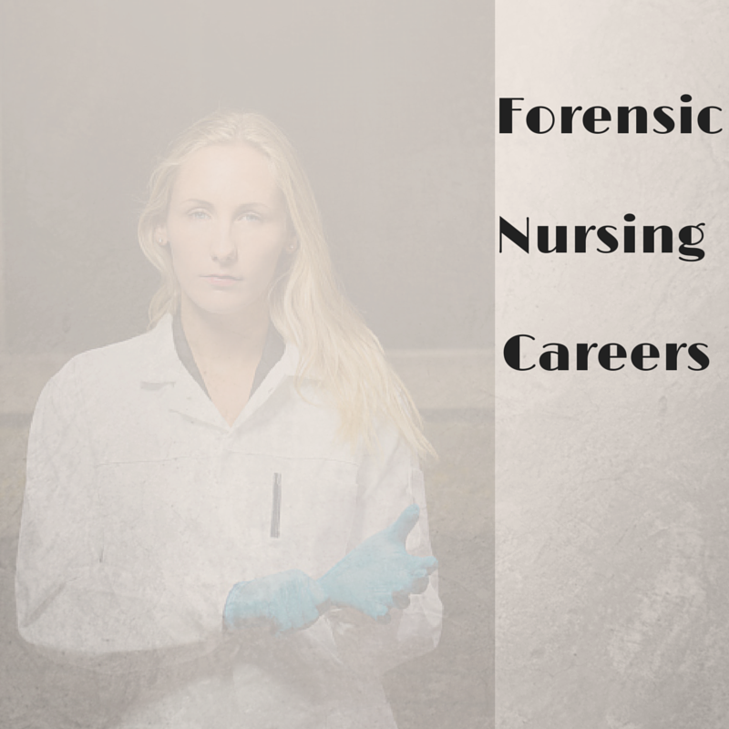 Steps in becoming a Forensic Nurse?
